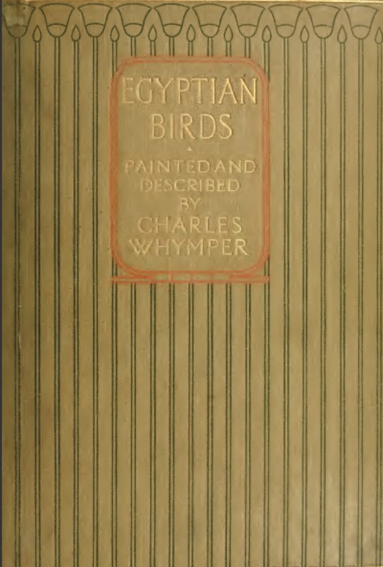 whymper-egyptian-birds-1909.png